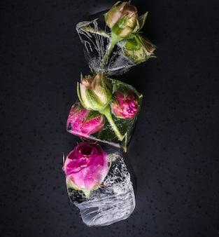 Rose congelée