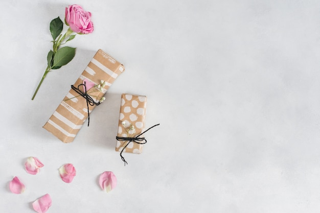 Rose fraîche près des cadeaux et des pétales