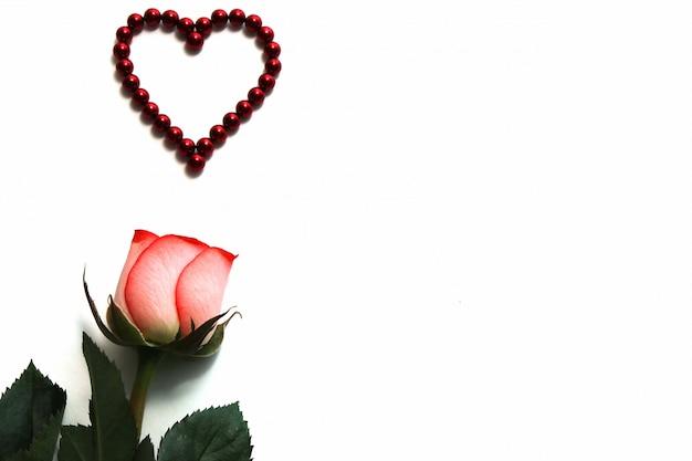 Rose naturelle et un coeur composé de perles magnétiques rouges sont isolés sur blanc