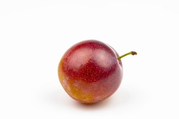Rose prune fraîche isolé sur fond blanc.