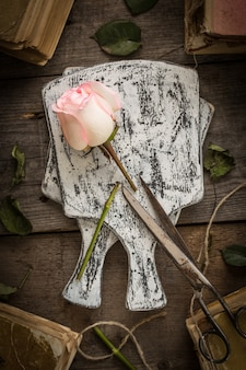 Rose rose fanée