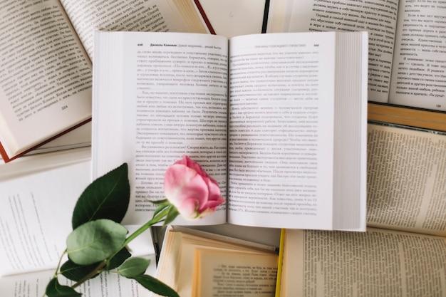Rose rose sur les livres ouverts