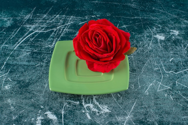 Rose rouge dans une assiette, sur fond bleu.