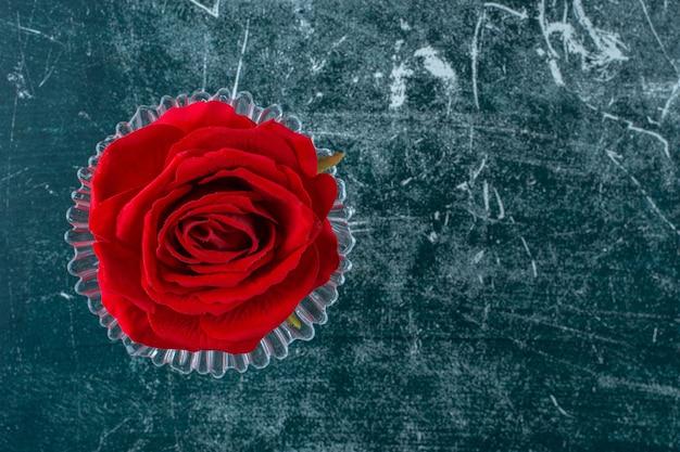 Rose rouge dans un socle en verre , sur fond bleu.