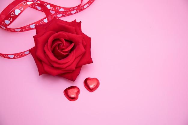 Une rose rouge sur fond rose