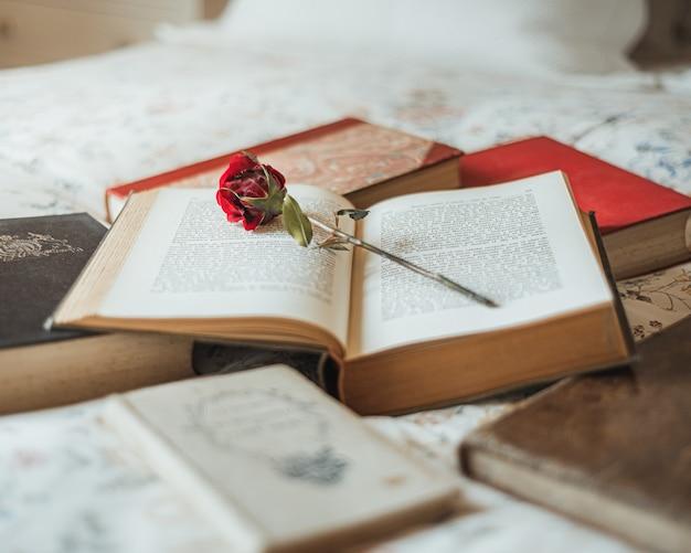 Rose rouge à l'intérieur d'un livre ouvert