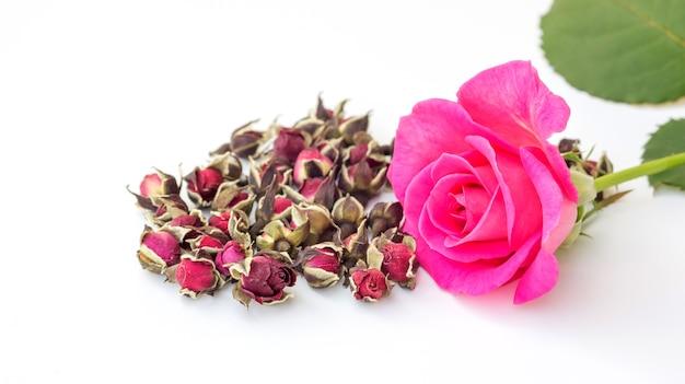 Rose séchée rose sur un fond blanc.