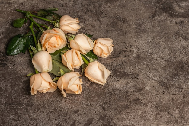 Roses beiges fraîches sur fond de béton texturé en pierre. le concept festif pour les mariages, les anniversaires, le 8 mars, la fête des mères ou la saint-valentin