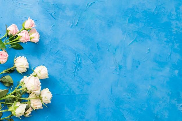 Roses blanches fraîches. concept d'anniversaire. copiez l'espace sur fond bleu.