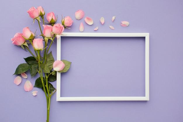 Roses avec cadre à côté