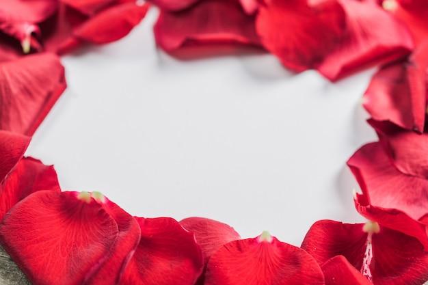 Roses et un cœur sur une planche de bois, saint valentin