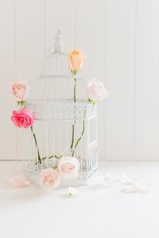 Roses colorées décoratives dans une cage