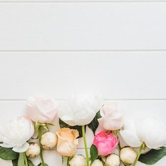 Roses colorées décoratives sur un fond