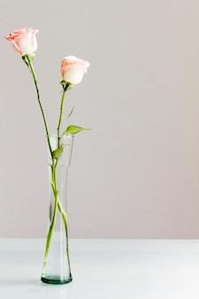 Roses dans un vase en verre
