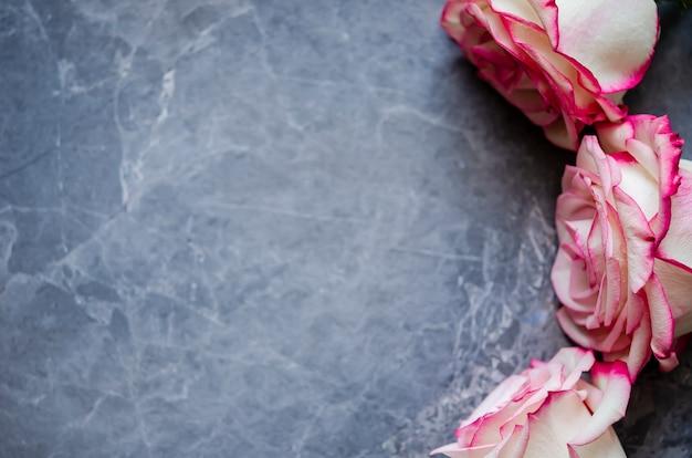Roses sur fond de marbre foncé