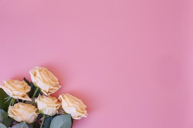 Roses fraîches sur fond uni rose avec place pour le texte