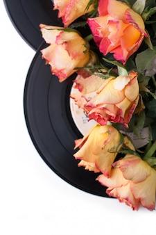 Roses orange avec de vieux enregistrements sur blanc