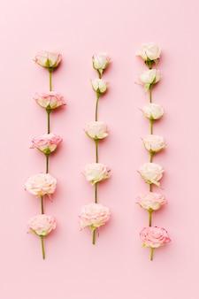 Roses en rangées et colonnes vue de dessus