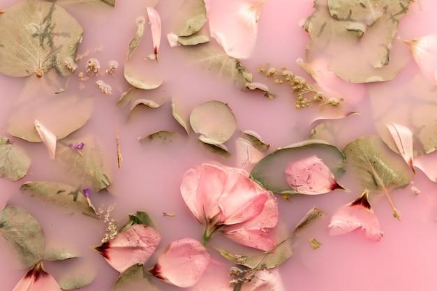 Roses roses dans l'eau colorée rose