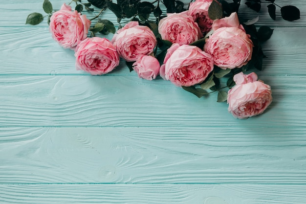 Roses roses sur une table bleue, concept de l'été