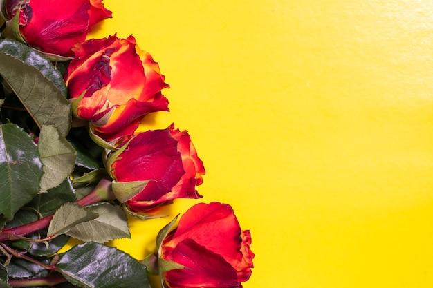 Roses rouges sur fond jaune avec espace copie