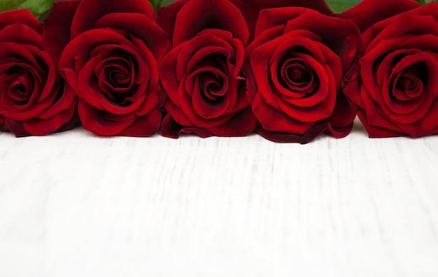 Roses rouges fraîches