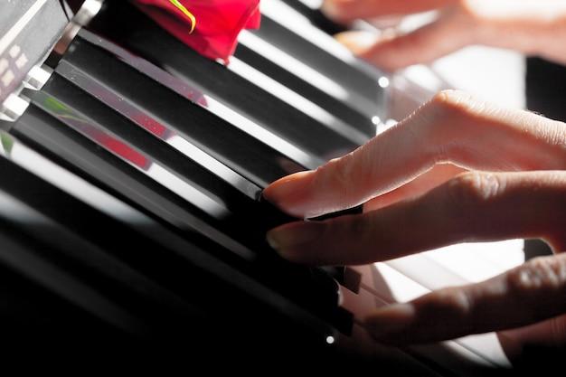 Roses rouges sur les touches du piano