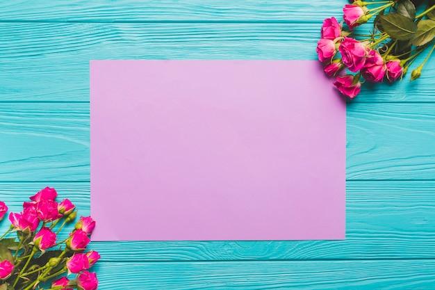 Roses vives près de papier lilas