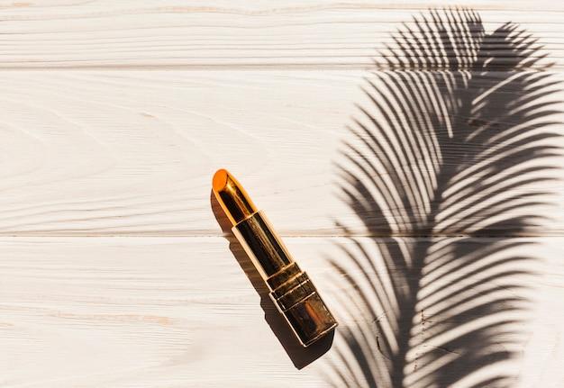 Rouge à lèvres vue de dessus avec ombre branche de palmier