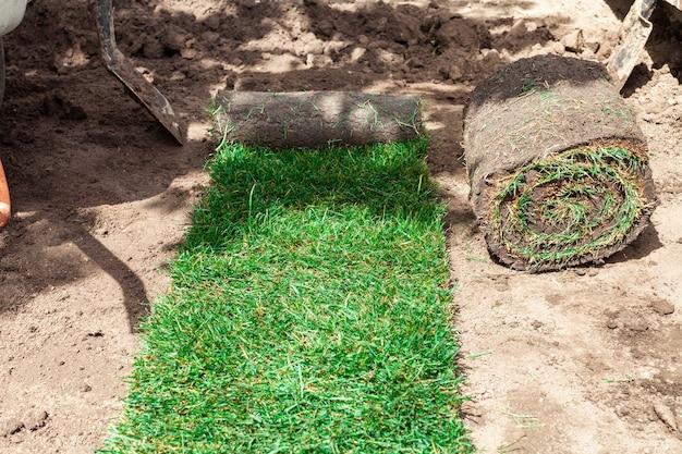 Rouleau vert déroulé de pelouse sur le sol