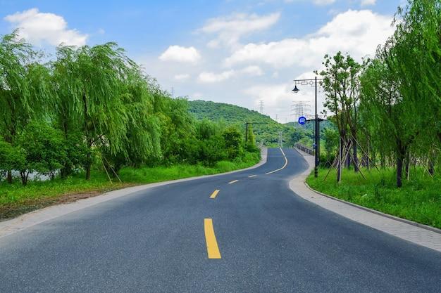 Route d'asphalte avec des lignes jaunes
