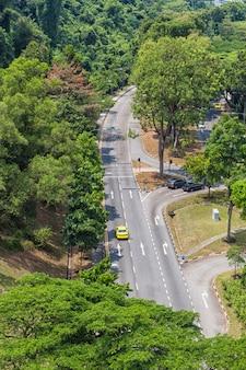 Route asphaltée au milieu de la jungle
