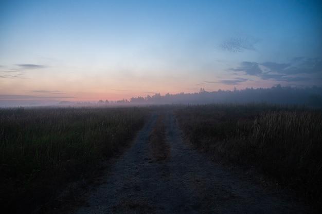 Route au sol dans le brouillard au lever du soleil d'été