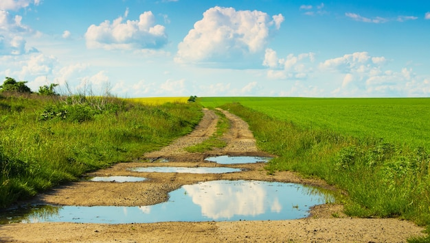 Route au sol dans le champ avec des flaques d'eau dans lesquelles les nuages sont affichés