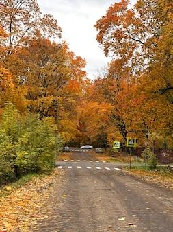 Route d'automne colorée dans la ville