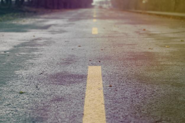 Route d'automne humide. feuilles d'automne. danger.