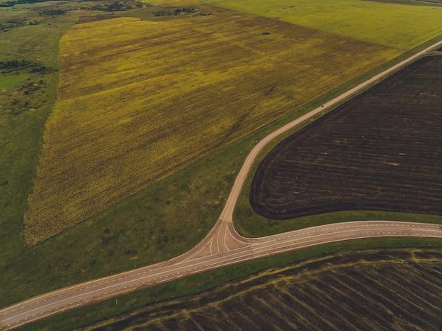 Route de campagne dans les champs de blé