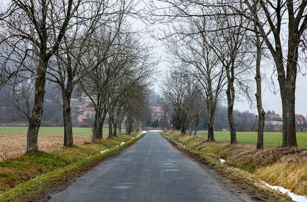 Route de campagne en hiver dans les sudètes, pologne