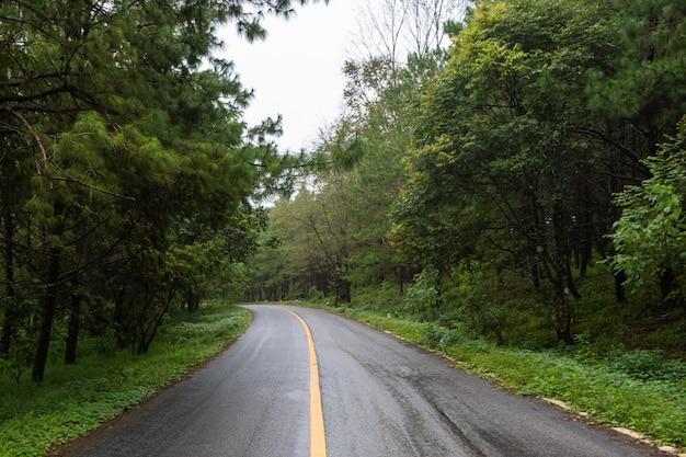 Route de campagne en saison des pluies