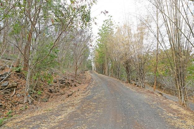 Route de campagne en thaïlande.