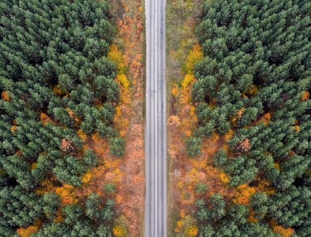 Route de campagne vide dans la forêt d'automne d'une vue à vol d'oiseau.