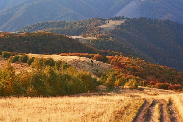 Route dans les montagnes. magnifique paysage de montagne d'automne.