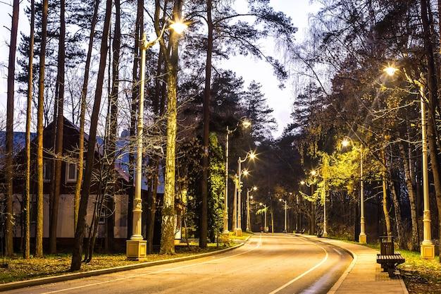 Route dans le parc la nuit allée avec de belles lanternes et bancs en bois