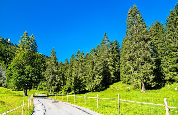 Route dans la vallée de l'obersee dans le canton de glaris, suisse