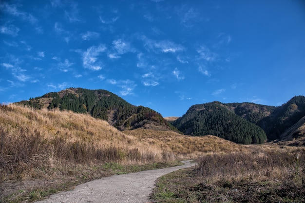 Route du japon sur le chemin du kyushu à la montagne en automne