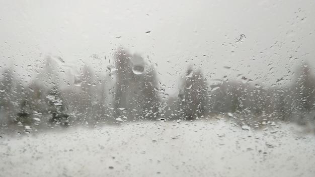 Route enneigée à travers la forêt d'hiver