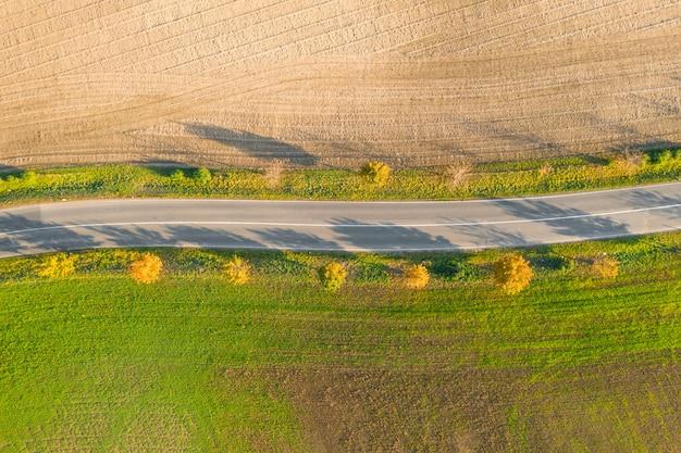 Route entre champ vert et terrain cultivé avec des arbres jaunes au coucher du soleil en automne. vue aérienne sur une piste d'asphalte vide ou une allée d'arbres.
