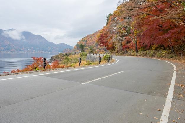 Route avec un érable coloré jaune et vert rouge à kawaguchiko au japon