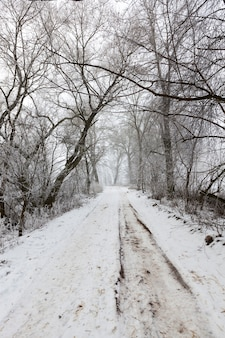 La route est dangereuse et glissante après le froid et le gel, une route couverte de neige en hiver