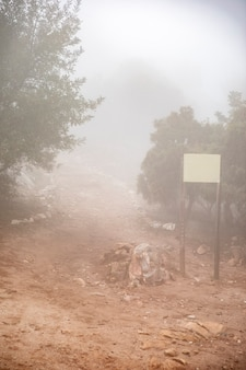 Route forestière avec panneau et brouillard